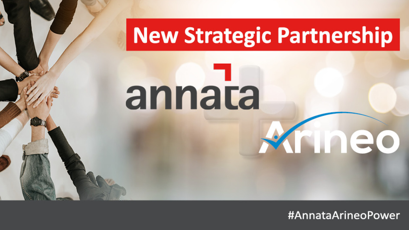 Arineo and Annata enter an exciting strategic partnership in the area of Dealer Management, Rentals and Service Management Software